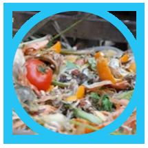 Lixo Organico